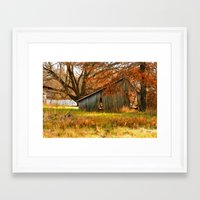 Country autumn colors Framed Art Print