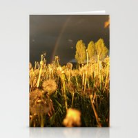 Rainbow Thunderstorm Sunset Through a Field of Dandelions Stationery Cards