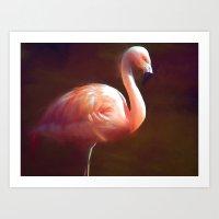 Flamingo dream Art Print