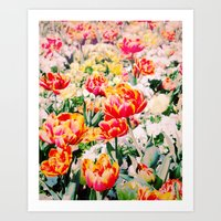 Beauty In Nature! Art Print