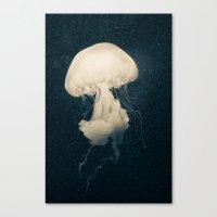 Intrigue Canvas Print