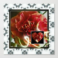 Rose of my heart 2 Canvas Print