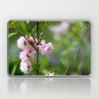 Flowering Almond Blossoms II Laptop & iPad Skin