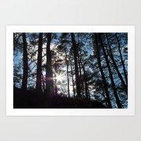 Sunlight In The Dark For… Art Print