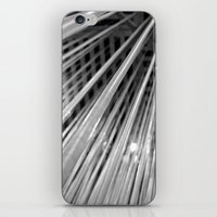 Warp Speed iPhone & iPod Skin