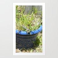 pot of grass Art Print