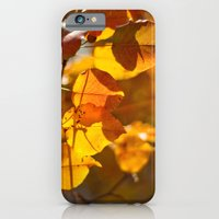 iPhone & iPod Case featuring Embers by Katie Kirkland Photography