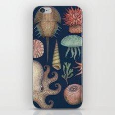Aequoreus Vita iPhone & iPod Skin