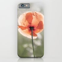 iPhone Cases featuring Poppy at backlight by UtArt