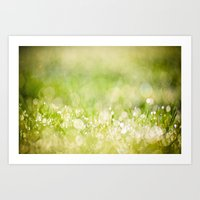 Morning Dew No.2 Art Print