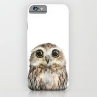 nature iPhone & iPod Cases featuring Little Owl by Amy Hamilton