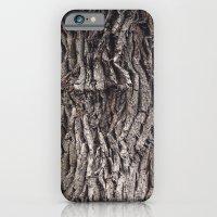 Oak tree trunk iPhone 6 Slim Case