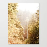 OREGON GORGE WATERFALL Canvas Print