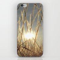 field of glitter iPhone & iPod Skin