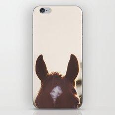 I'm all ears. iPhone & iPod Skin