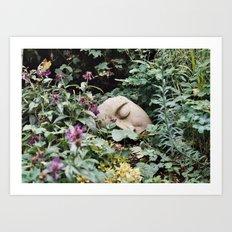 Resting Intuition Art Print