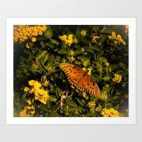 Orange Beach Butterfly 2 Art Print
