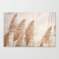 Wind in the Meadow Canvas Print