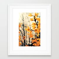 It's Not What It Seems Framed Art Print
