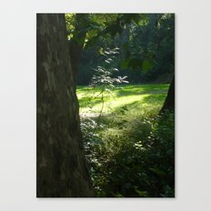 Little one Canvas Print