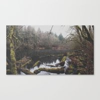 Hidden Pond Canvas Print