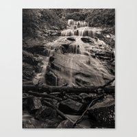 A Little Falls In The Wo… Canvas Print