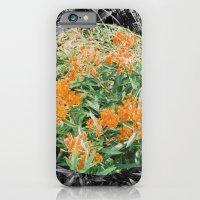 High Line Sunshine iPhone 6 Slim Case