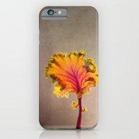 cabbage iPhone 6 Slim Case