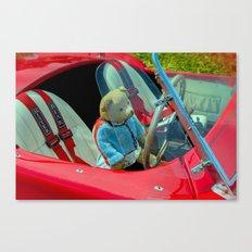 BEARY NICE CAR Canvas Print
