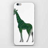 Giraffe is for Green iPhone & iPod Skin