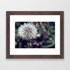 Delicate. Framed Art Print