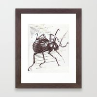 Black Beetle Framed Art Print