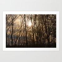 Iowa Winter Sun Art Print