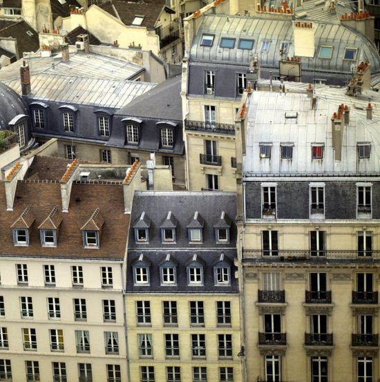 Paris Rooftop #2 Canvas Print