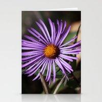 Purple Flower Stationery Cards