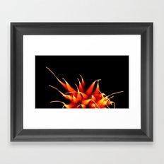 Efflorescence 22 Framed Art Print