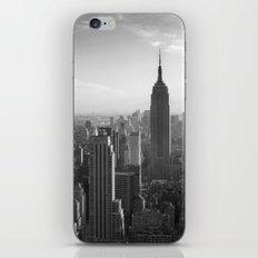 LandscapeNewYork iPhone & iPod Skin