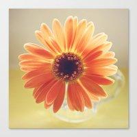 Orange Daisy Canvas Print