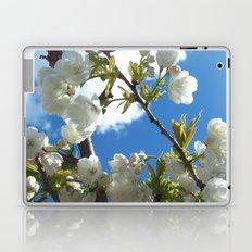 Pure Laptop & iPad Skin