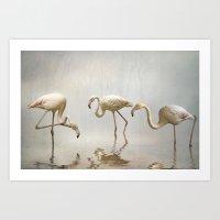 Flamingo mist Art Print