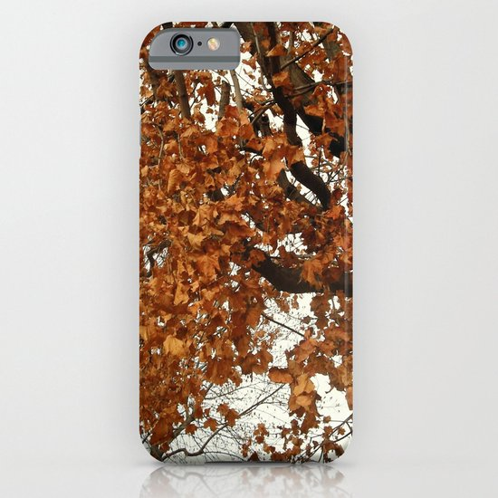 Colors Thriving As The Leaves Are Dying iPhone & iPod Case