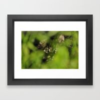 through the jungle Framed Art Print
