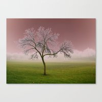 Dreamy Canvas Print