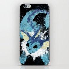 Water Stone iPhone & iPod Skin