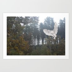 Owl in the Forest Art Print