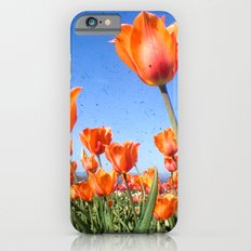 Orange Crush iPhone 6 Slim Case