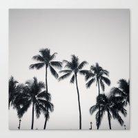 Palmtreeeeeee Ver.black Canvas Print