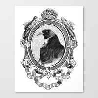 Old Black Crow Canvas Print