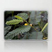 Blooming Fern Laptop & iPad Skin