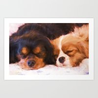 Sleeping Buddies Cavalier King Charles Spaniels Art Print